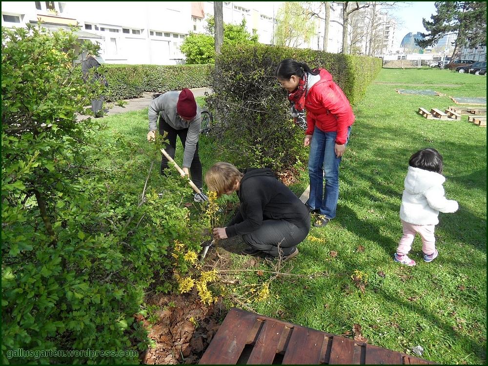 geschafft bau der ersten hochbeete aus paletten gallusgarten blog zum urban gardening. Black Bedroom Furniture Sets. Home Design Ideas
